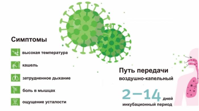 Можно ли заболеть коронавирусом второй раз и как быстро